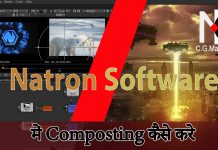 Natron Software