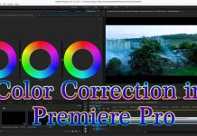 Color Correction in Premiere Pro