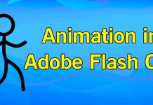 Animation in Adobe Flash